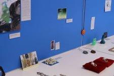 Armillaria installation by Armillaria (Melbourne Hallimasch)