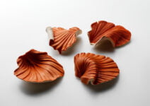 Red Ra shell brooches by Catherine Truman
